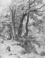 In the forest, 1886, shishkin