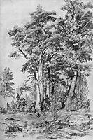 In the forest, 1889, shishkin