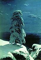 In the Wild North , 1891, shishkin