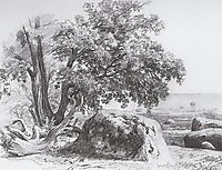 Oak on the shore of the Gulf of Finland, 1857, shishkin