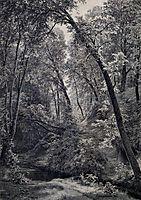 On a stream, 1895, shishkin