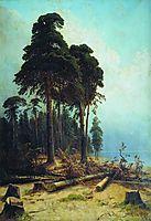 Pine forest , 1884, shishkin