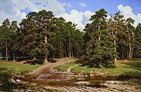 Pine forest , 1895, shishkin