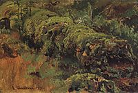 Rotten wood, covered with moss, 1890, shishkin