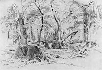 Sawn Tree, shishkin