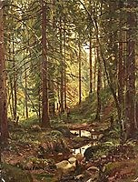 Stream by a Forest Slope, 1880, shishkin