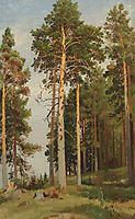 The Sun lit Pines, shishkin