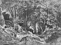 Valaam. Forest on the rocks, 1859, shishkin