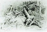 Wind Fallen Trees, 1867, shishkin