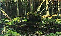 Wind Fallen Trees, 1887, shishkin
