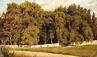 Woods behind the fence, 1898, shishkin