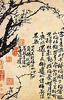 Prunus in flower, 1694, shitao