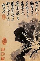 Tete de Chou, 1694, shitao