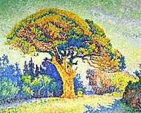 The Pine, Saint Tropez, 1909, signac