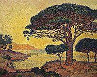 Pine tree, Canoubiers, 1897, signac