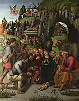 Adoration of the Shepherds, signorelli