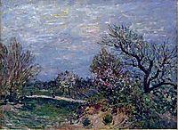 Border of the Woods, 1885, sisley