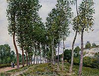 Lane of Poplars on the Banks of the Loing, 1892, sisley