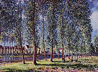 Lane of Poplars at Moret, 1888, sisley