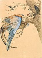 Blue Bird (Bird Sirin), solomko