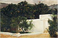 Orange trees on the road to Seville, sorolla