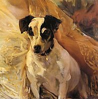Portrait of a Jack Russell, sorolla