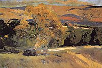 The Yellow Tree, La Granja, 1906, sorolla
