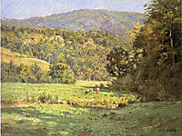 Roan Mountain, steele