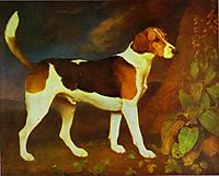A Foxhound, Ringwod, 1792, stubbs