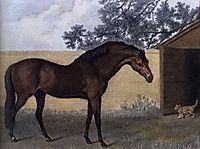 Godolphin Arabian, stubbs