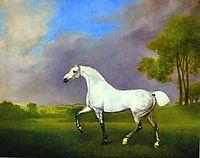A Grey Horse, 1793, stubbs