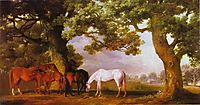 Mares and Foals in a Wooded Landscape, 1762, stubbs