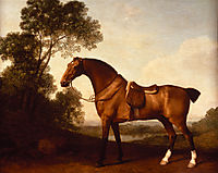 A Saddled Bay Hunter, 1786, stubbs