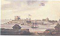 A Fort, svinyin