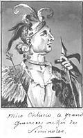 Great Warrior of Seminols, svinyin
