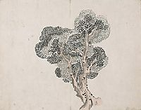 Untitled (a tree without leaves), taiga