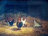 Chickens, tattarescu
