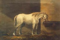 Horse in the Barn, tattarescu
