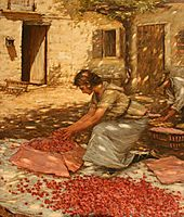 Packing Cherries in Provence, France, 1923, thangue