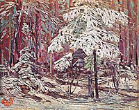 Snow in the Woods, thomson