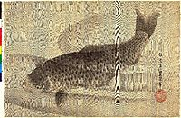 Grey carp in water, toyokuniii