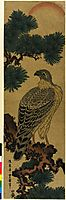 Kachoga. Falcon on a pine branch, rising sun above, toyokuniii