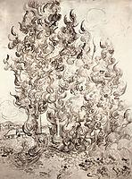 Cypresses, 1889, vangogh