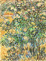 Flowering Shrubs, 1889, vangogh