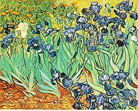 Irises, 1889, vangogh