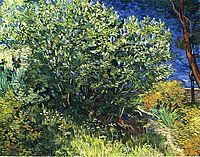 Lilac Bush, 1889, vangogh
