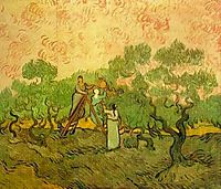 Olive Picking, 1889, vangogh