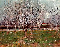 Orchard in Blossom (Plum Trees), 1888, vangogh