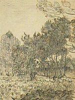 Pine Trees near the Wall of the Asylum, 1889, vangogh