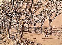 The Road to Tarascon, 1888, vangogh